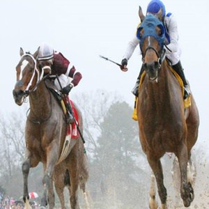 como-apostar-na-corrida-de-cavalos-no-sportingbet